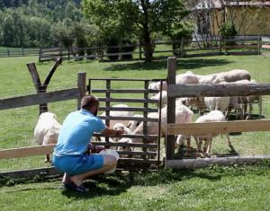 Landwirtschaft Klagenfurt-Rottenstein
